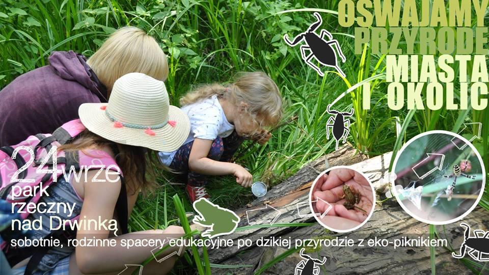 Atrakcje weekendowe Krakowa i okolic dla dzieci i rodziców