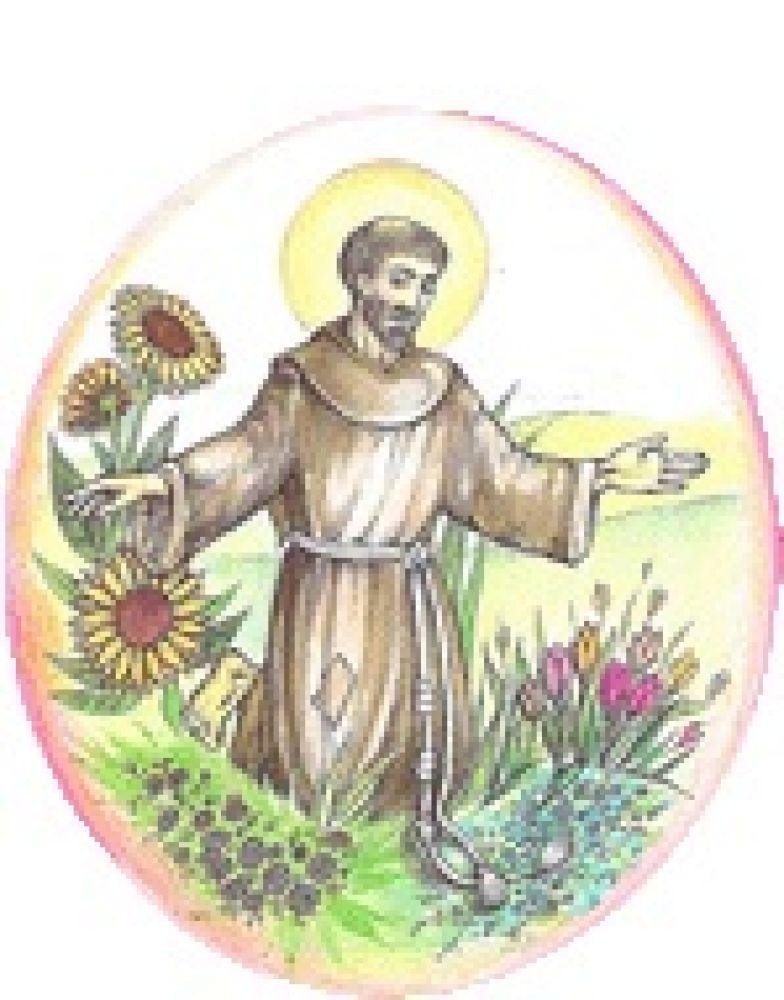 Prywatne Przedszkole Św. Franciszka