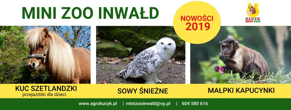 Pokucaj do Mini Zoo w Inwałdzie